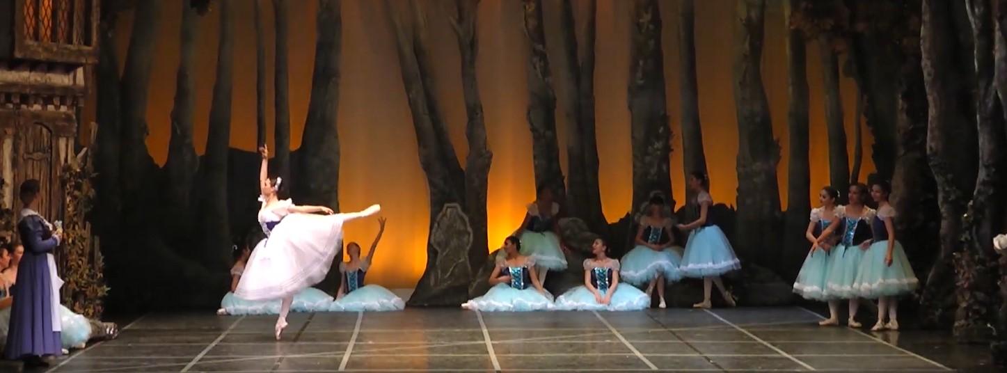 dünya dans merkezi giselle bale gösterisi