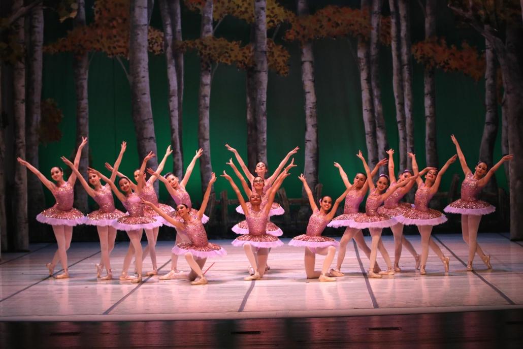 Dünya Dans Merkezi Dans ve Bale Kursu Sene Sonu Gösterisi
